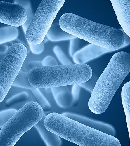 De nombreux types de virus peuvent causer un rhume.